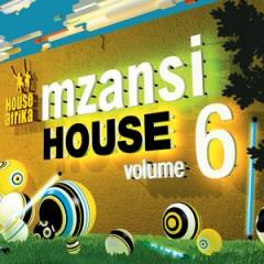 Mzansi House Vol. 6 BY Calvin Fallo